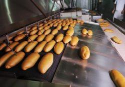 locuri de munca operator productie Londra