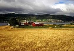 locuri de munca agricultura Aarhus