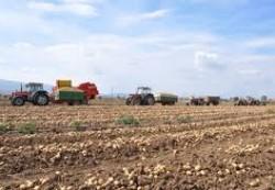locuri de munca agricultura Anvers