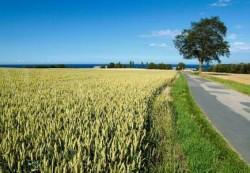 locuri de munca agricultura Odense