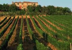 locuri de munca agricultura Roma