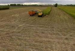 locuri de munca agricultura Rotterdam