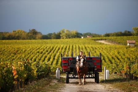Cel mai bun site de dating agricultor Cauta? i omul Serieu.