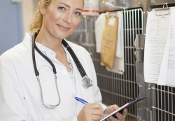 locuri de munca medic veterinar Oslo